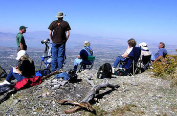 Bird Watching on Squaw Peak Utah